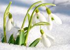 Neuheiten März