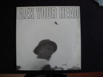 V.A. ?– Flex Your Head