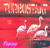 Turbostaat - Flamingo  Lp